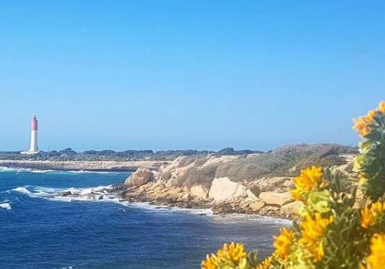 Eine beeindruckend Felsenküste gibt es in Martigues