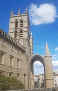 Montpellier-Sehenswürdigkeiten-Kathedrale-Saint-Pierre2