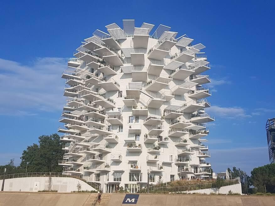 Montpellier Sehenswürdigkeiten - arbre blanc